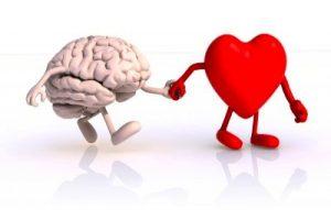 cerveau_coeur
